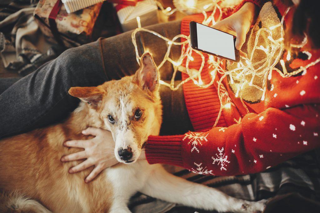 Karácsonyi marketing tippek a Facebooktól 1. rész - Így készülj fel az ünnepekre!